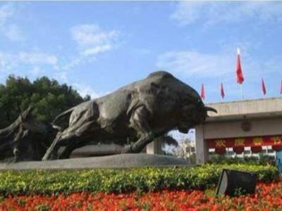 2020年:环卫市场的战略要地——深圳
