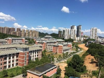 江西省宜春市袁州区辽市镇垃圾一体化外包服务项目