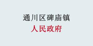 玉龙环保合作客户-通川区碑庙镇人民政府