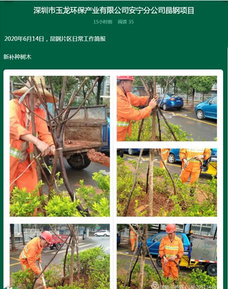 美篇记录新补种树木-玉龙环保