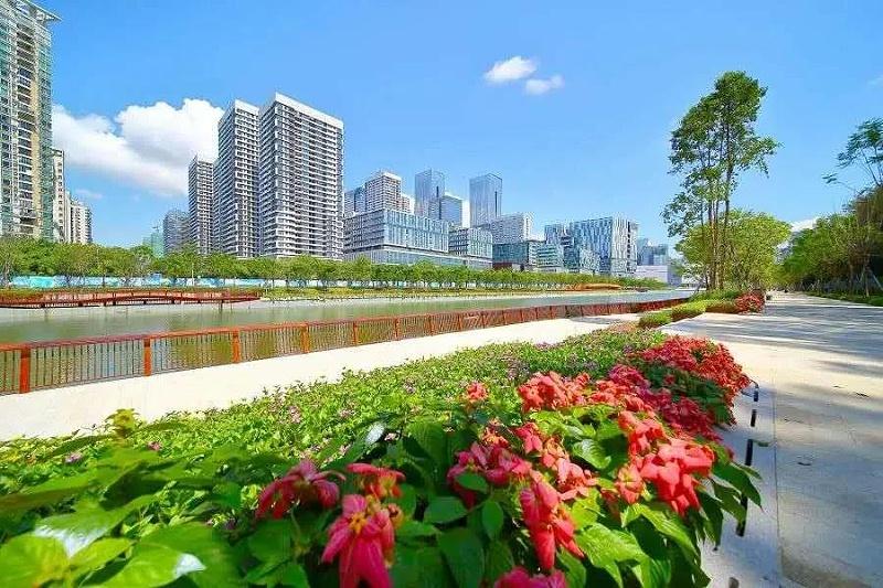 深圳美丽的城市街道-玉龙环保