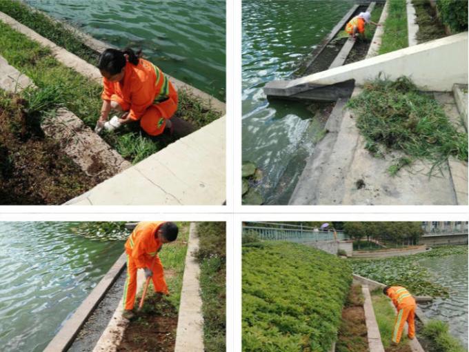 耕耘、精益、阳光——美篇记录云南安宁玉龙人环卫服务的风采