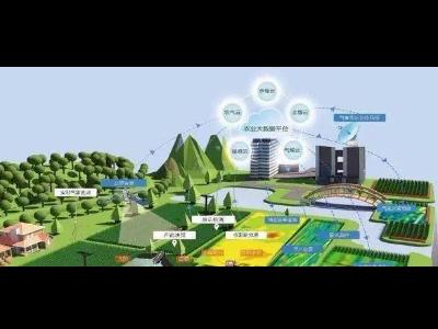 《数字乡村建设指南1.0》,推进农村生活垃圾收运数字化监管!
